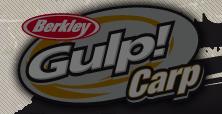 gulp-carp
